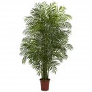 7.5' Areca Palm UV Resistant (Indoor/Outdoor)