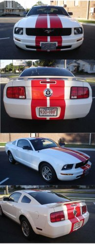 "Mustang 10"" Precut Racing Stripes Stripe Kit"