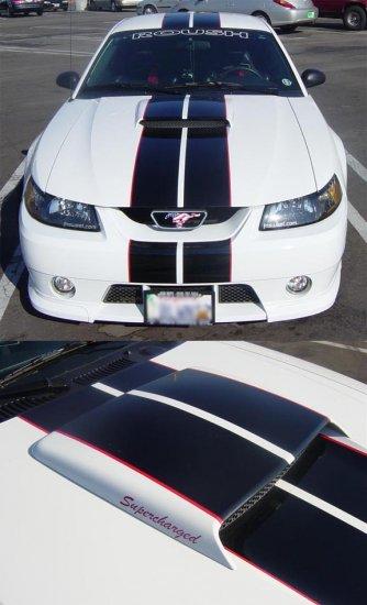 "MUSTANG ROUSH 8"" Racing Rally Stripes PLUS Pinstripes"
