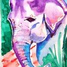 """Asian Elephant"" Watercolor Painting Print"