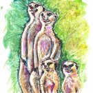 """Meerkat Family"" Watercolor Painting Print"