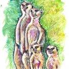 """""""Meerkat Family"""" Watercolor Painting Print"""