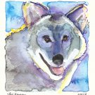 """Laughing Wolf"" Watercolor Painting Print"