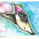 """Hummingbird"" Watercolor Painting Print"