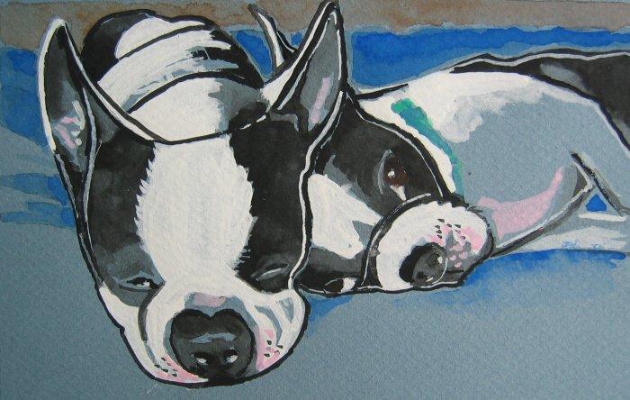 """Sleeping Boston Terriers"""" Watercolor Painting Print"""