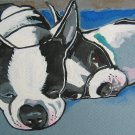 "Sleeping Boston Terriers"" Watercolor Painting Print"