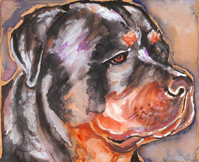 """""""Rottweiler (Blue)"""" Watercolor Painting Print"""