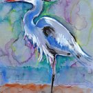 """Great Blue Heron"" Watercolor Painting Print"
