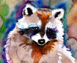 """Raccoon"" Watercolor Painting Print"