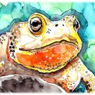 """Toad"" Watercolor Painting Print"