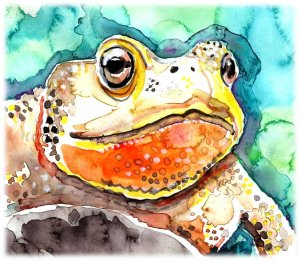 """""""Toad"""" Watercolor Painting Print"""