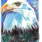 """Bald Eagle"" Watercolor Painting Print"