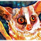 """Bushbaby"" Watercolor Painting Print"