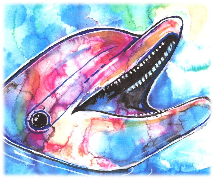"""""""Dolphin"""" Watercolor Painting Print"""