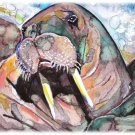 """Walrus"" Watercolor Painting Print"