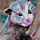 """Baby Opossum"""" Watercolor Painting Print"