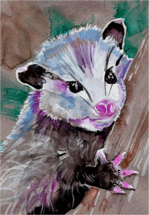 """Baby Opossum"""" Watercolor Painting Print"