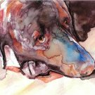 """Chocolate Lab"" Watercolor Painting Print"