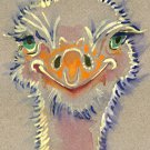 """Ostrich"" Watercolor Painting Print"