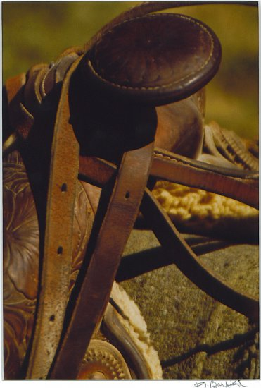 Saddle Rodeo Photograph 8x10- Matted 11x14