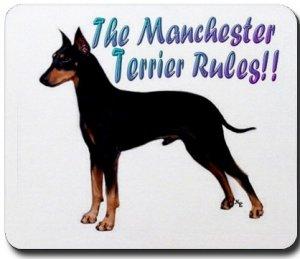 Manchester Terrier Tile Coaster