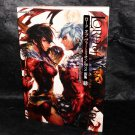 LORD of VERMILION Re:2 Illustrations Scarlet Ver.R2.2 JAPAN GAME ART BOOK NEW