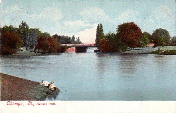 Lagoon in Jackson Park Chicago Illinois IL, Undivided Back Vintage Postcard - 3494