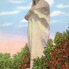 Black Hawk Monument on Eagle's Nest Bluff near Rockford Illinois IL, Linen Postcard - 3569