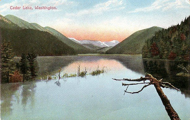 Cedar Lake in the State of Washington WA Vintage Postcard - 3635