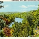 Scenic View at Shoal Creek, McClelland Park, Joplin Missouri MO Linen Postcard - 3658