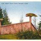 Shake's Grave Totems in Wrangell Alaska AK Vintage Postcard - 3737