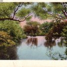 The Schroon River in New York NY Vintage Postcard - 3781