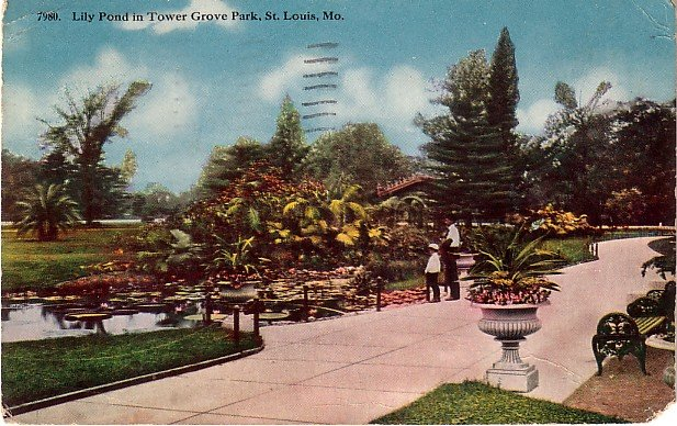Lily Pond in Tower Grove Park, St. Louis Missouri MO 1915 Vintage Postcard - 3862