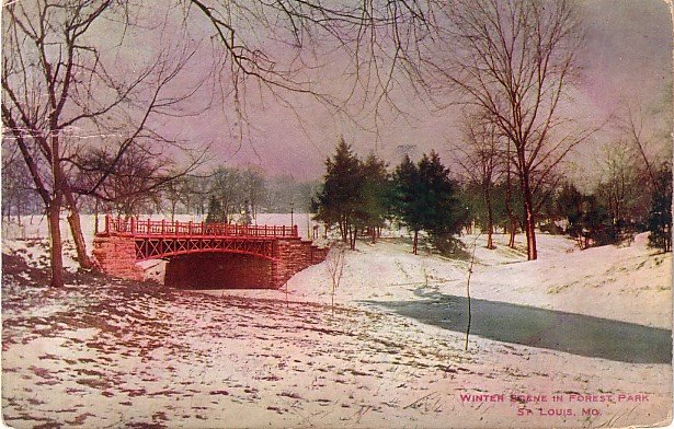 Winter Scene in Forest Park St. Louis  Missouri MO 1910 Vintage Postcard - 3917