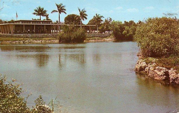 Everglades National Park, Royal Palm Station in Florida FL Chrome Postcard - 0069