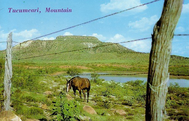 Tucumcari Mountain near Highway 66 in New Mexico NM Chrome Postcard - 0097
