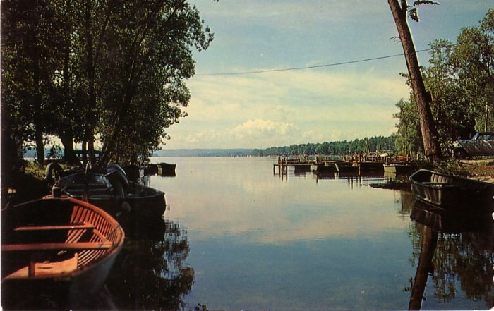 The Finger Lakes in Central New York, Chrome Postcard - 0108