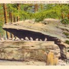 Alligator Rock at Otis Summit in Catskill Mountains New York 1934 Curt Teich Linen Postcard - 0281