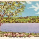 Brown's Pond in South Fallsburg New York NY Linen Postcard - 0465