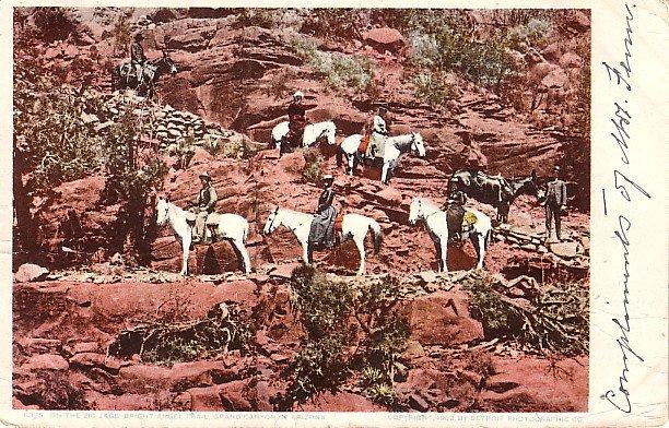 Zig Zag Bright Angel Trail in the Grand Canyon, Arizona Detroit Publishing Postcard - 0645