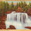 Blackwater Falls in West  Virginia WV 1935 Curt Teich Linen Postcard - 0659