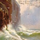 Raphael Tuck & Sons' 1906 Vintage Postcard Rough Seas - 0705