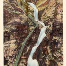 Seven Falls at Cheyenne Canon in Colorado CO Linen Postcard - 0730
