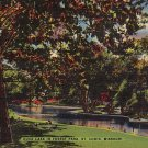 Duck Lake at Forest Park in St. Louis Missouri Linen Postcard - 0906