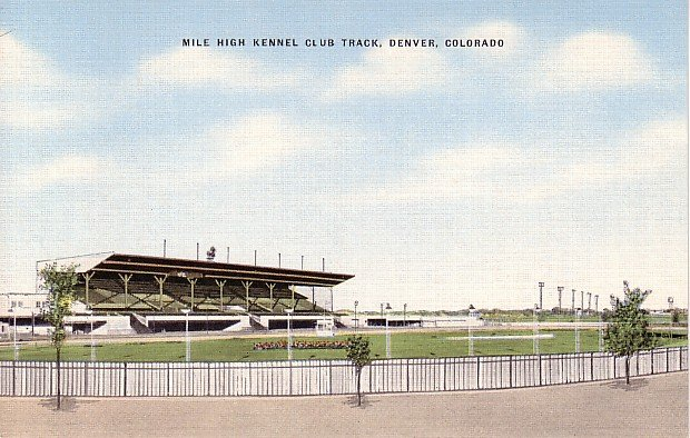 Mile High Kennel Club Track at Denver Colorado CO Linen Postcard - 1291