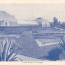 Greenhouses in Chicago IL Illinois Postcard - 1459