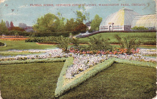 Washington Park Floral Display and Conservatory in Chicago Illinois IL 1909 Vintage Postcard - 1766