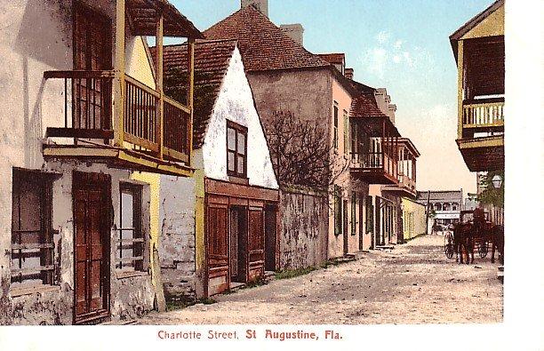 Charlotte Street at St. Augustine Florida FL Vintage Postcard - 1806