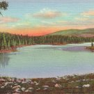 Alexander Lake on Grand Mesa in Colorado CO 1940 Curt Teich Postcard - 1822