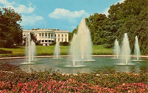 White House Looking South, Washington D.C. Chrome Postcard - 2106